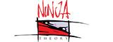 Ninja Theory (游戏)